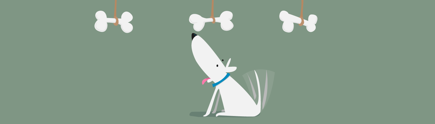 Illustration of dog choosing between three bones.